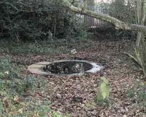 Birch Well, Snaresbrook